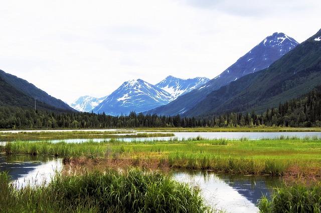 Alaska business class