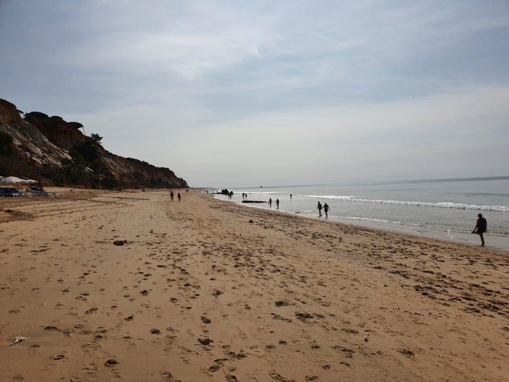 Pine Cliffs Resort beach