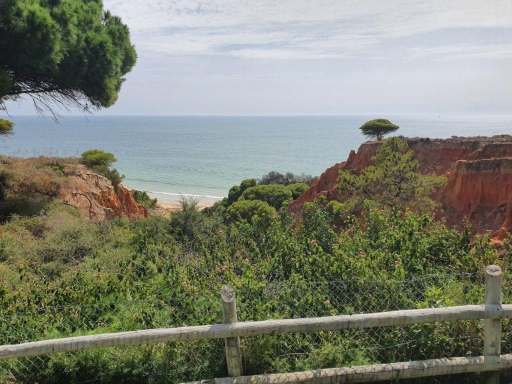 Pine Cliffs Resort viewq